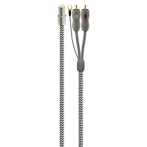 AudioQuest - Wildcat 1.5m Tonearm Cable -DIN (JIS) to RCA-
