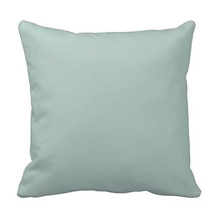 Amazon Seafoam Blue Sea Foam Green Color Trend Template Throw Best Seafoam Green Decorative Pillows