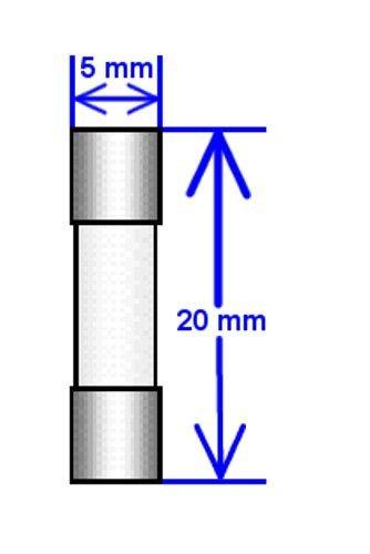 5 Qty GMA 315 mA GMA/_315mA GMA 315mA Fast-Blow Fuse 250v GMA315mA