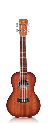 electric acoustic ukulele - 4