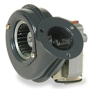 Dayton 1TDN1 Shaded Pole Blower, 115 Volt