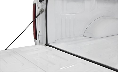 (Access Cover 30946 TrailSeal Kit Tailgate Seal; Fits All Pickups;)