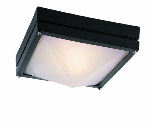 Trans Globe Lighting 43302 RT Outdoor Harland 4