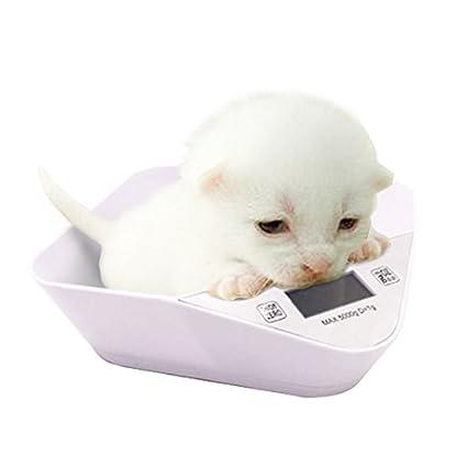 Mascotas Digitales y báscula de Cocina para Perrito recién Nacido o pequeño Gatito con un tazón