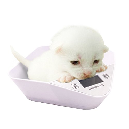 Island Bowl (PETS ISLAND Digital Pets And Kitchen Scale For New Born Puppy Or Small Kitty With A Free Bowl, Green)