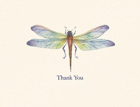 Dragonfly Card Designs - 5