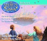 The Secrets of Droon: Volume 2: #4:City in the Clouds; #5:The Great Ice Battle; #6:The Sleeping Giant of Goll by Imagination Studio