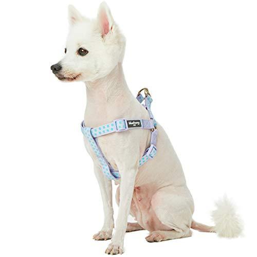Blueberry Pet 2019 New Spring Step-in Velvety Polka Dot Flocking Dog Harness in Pastel Purple, Chest Girth 16.5