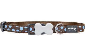 Red Dingo Designer Dog Collar, Small, Blue Spots on Brown