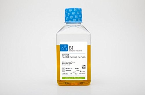 Fetal Bovine Serum (FBS), US Origin, 500 mL