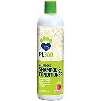 : Amazon.com: PL360 All-in-One Gel Shampoo & Conditioner
