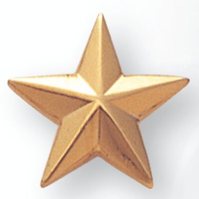 Pin Gold Lapel Star (5/8 Inch Gold Star Lapel Pin - Pack of 12)