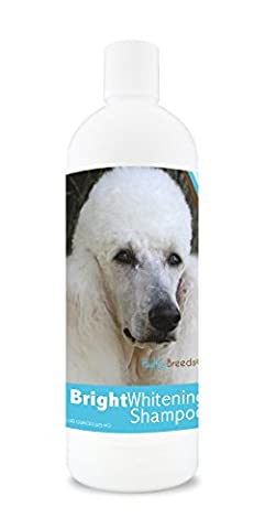 Healthy Breeds Dog Bright Whitening Shampoo for Poodle - For White, Lighter Fur – Over 40 Breeds – 12 oz - With Oatmeal For Dry, Itchy, Sensitive, Skin – Moisturizes, Nourishes (Dog Conditioner For Poodles)