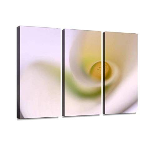 - Calla Lily Detail Print On Canvas Wall Artwork Modern Photography Home Decor Unique Pattern Stretched and Framed 3 Piece