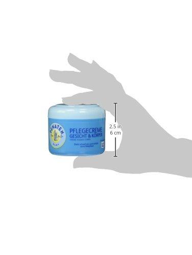 crema para la cara y el cuerpo de atención Penaten 100 ml: Amazon.es: Salud y cuidado personal