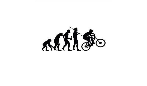 Zybnb Etiquetas Engomadas Del Coche Del Vinilo De La Evolución De La Bici Que Suben De La Personalidad De Los 15.2Cm * 5.7Cm - 3Pcs: Amazon.es: Bricolaje y herramientas
