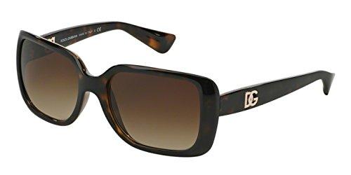 Dolce&Gabbana DG6093 Sunglasses 502/13-56 - Havana Frame, Brown - Dolcegabbana Sunglasses
