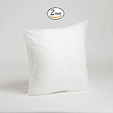 Set of 2 - 20 x 20 Premium Hypoallergenic Stuffer Pillow Insert Sham Square Form Polyester, Standard / White - MADE IN USA
