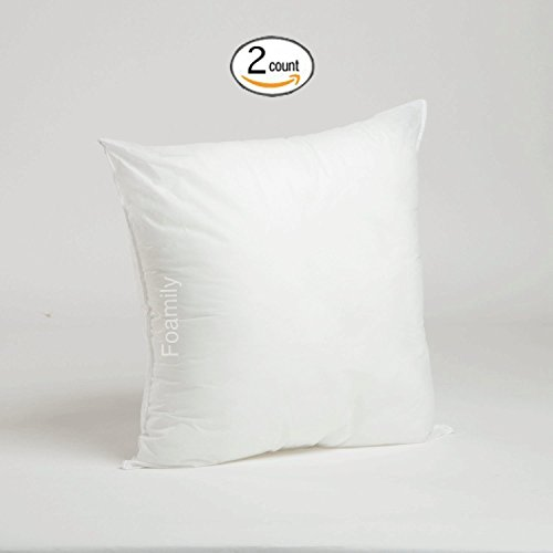 Set of 2-20 x 20 Premium Hypoallergenic Stuffer Pillow Insert Sham Square Form Polyester, Standard/White - MADE IN USA