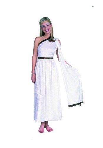 Toga Costume with drape Plus Size
