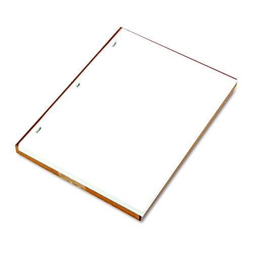 Wilson Jones 90310 Ledger Sheets for Corporation and Minute Book, White, 11 x 8-1/2, 100 Sheets