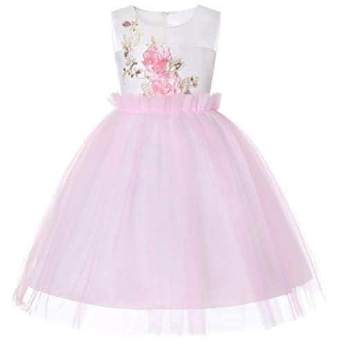 Sunhusing Toddler Infant Baby Sleeveless Bow Lace Tulle Dress Gown Adorable Girls Flowers Decor Tutu ()