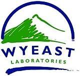 2 Pack - Wyeast 4134 Sake