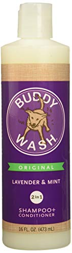 Cloud Star Buddy Wash Lavender & Mint 2-in-1 Dog Shampoo + Conditioner 16 Oz (Cloud Splash Star Buddy)