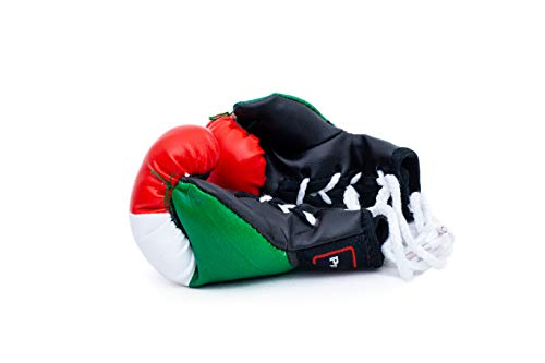 Pro Impact Mini Boxing Gloves - Miniature Punching Gloves - Holiday Christmas Ornament - Hanging Decoration or Souvenir Display - for Home & Car Use - 1 Pair (Mexican Flag) ()