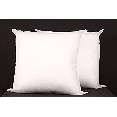(Set of 2)Square Sham Pillow Insert 18x18 Made in USA (Perfect for 18 x18  Pillow Cover)