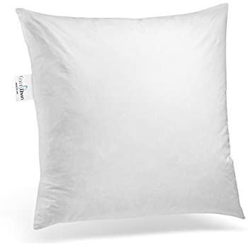 Amazon ComfyDown 40% Feather 40% Down 40 X 40 Rectangle Adorable 14x18 Pillow Insert