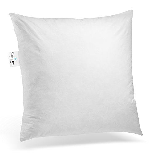 ComfyDown 95% Feather 5% Down, 20 X 20 Square Decorative Pillow Insert, Sham Stuffer - MADE IN (United Feather Down Pillows)