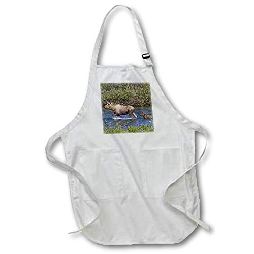 3dRose Danita Delimont - Moose - Alaskan Cow Moose with Young Calf - Medium Length Apron with Pouch Pockets 22w x 24l (apr_314504_2) ()