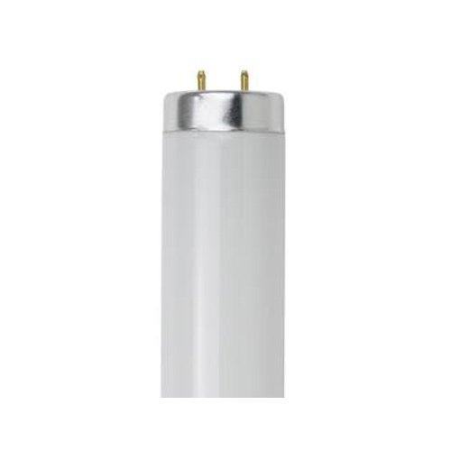 Sunlite 20W 24 inch Cool White 4100K Fluorescent Tube Bulb - F20T12/CW