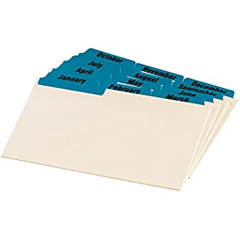 photograph relating to Sidetracked Home Executives Printable Cards titled : Oxford Index Card Books with Laminated Tabs