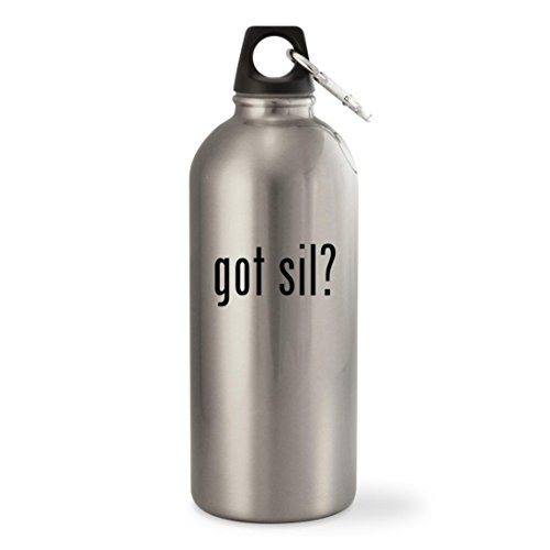 Got Sil    Silver 20Oz Stainless Steel Small Mouth Water Bottle