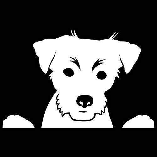 CELYCASY Peeking Terrier Jack Russell Vinyl Decal Window Sticker