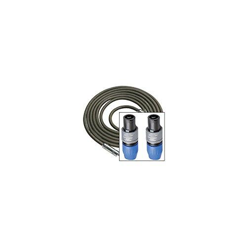 Rapco R16-10N4N4 10 foot Speaker Cable, 16 gauge Speakon to Speakon