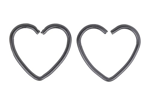 CM Body Jewelry Assorted 2pcs 16g 1/2'' Heart 316l Seamless Daith Cartilage Earring Hoop