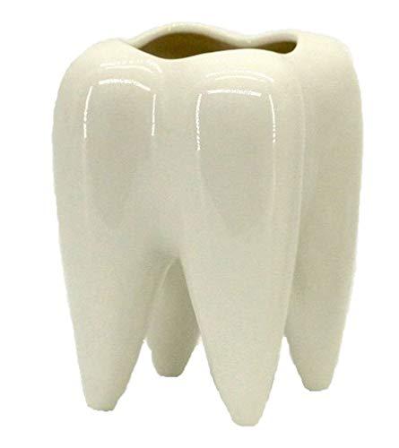 Easyinsmile Teeth Shaped Molar Vase White Ceramic Succulent Planter Pots Flower Plant Containers Creative Desktop Pen Pencil Holder