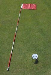 グリーンセット(全ステンレス製ホールカップ発音板付&ポール(白赤ストライプ)&ピンフラッグ) フラッグ:赤色 無地   B004WMEJ72