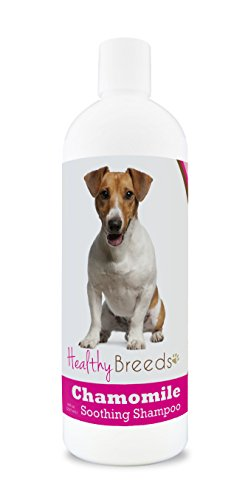 Healthy Breeds Chamomile Dog Shampoo & Conditioner with Oatmeal & Aloe for Jack Russell Terrier  - OVER 200 BREEDS - 8 oz - Gentle for Dry Itchy Skin - ()