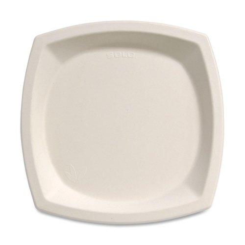 Solo-Bare-Sugar-Cane-Plates-10-125-per-pack