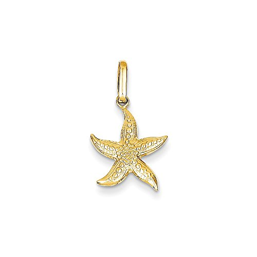 14k Yellow Gold Textured Starfish Pendant Charm Necklace Sea Shore Shell Man Fine Jewelry Gift For Dad Mens For Him ()