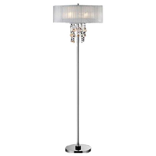 (ORE International K-5136-F1 Moon Jewel Floor Lamp, 20