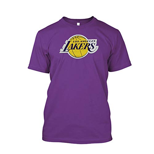 VF Lebron James Los Angeles Lakers #23 Women's Plus Size Player T-Shirt Purple (Plus 4X)