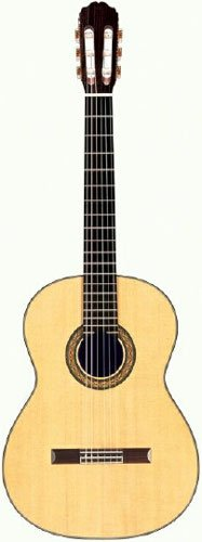 Takamine H8SS Acoustic Electric Classical