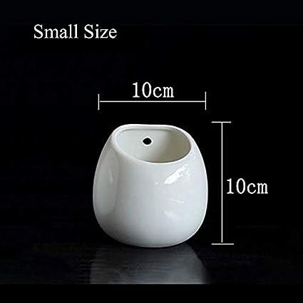 Amazon.com: SeedWorld – Cesta de cerámica para colgar ...