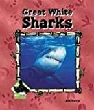 Great White Sharks, Julie Murray, 1577657063