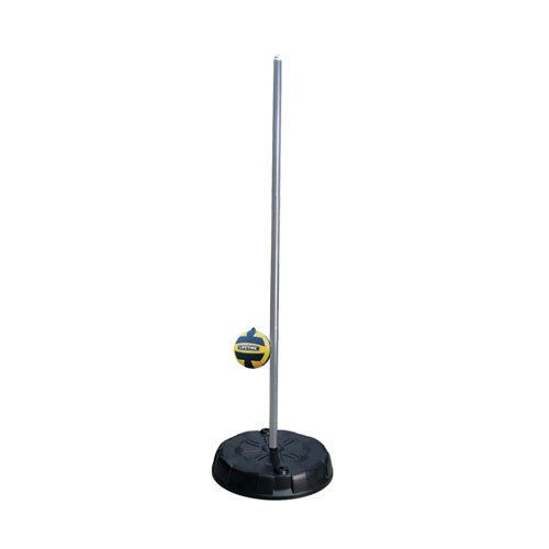 Lifetime Products 90071 Portable Tetherball System, Silver Pole by Lifetime